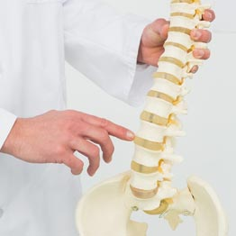 Spine Chiropractic Professionals of Columbia